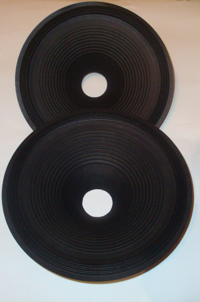 12 inch Cone for Ryu Field Coil Loudspeakers